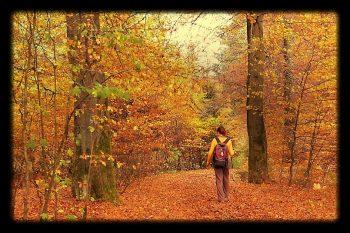 Marleen in het bos